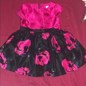 Gymboree Floral fushia dress